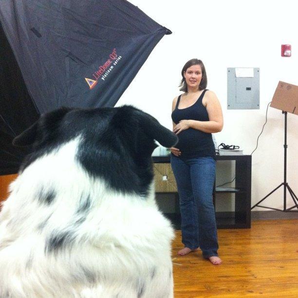 Winston, watching the maternity shoot.