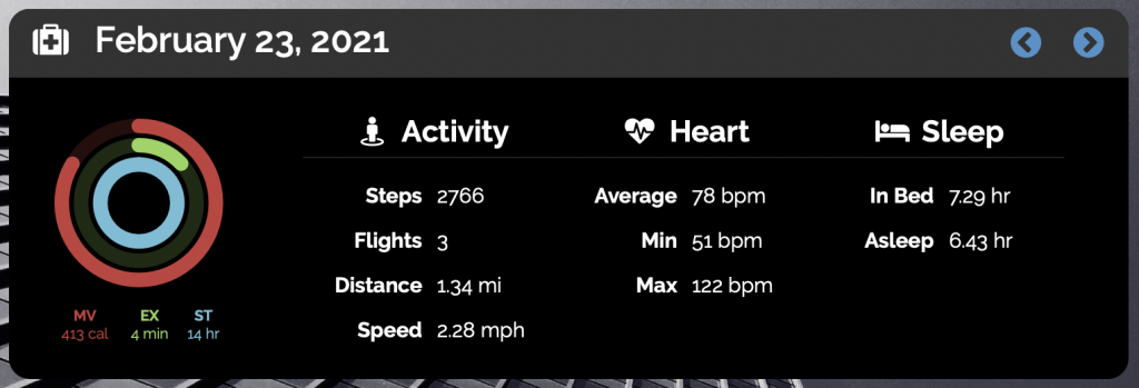 Daily Health Metrics Screenshot