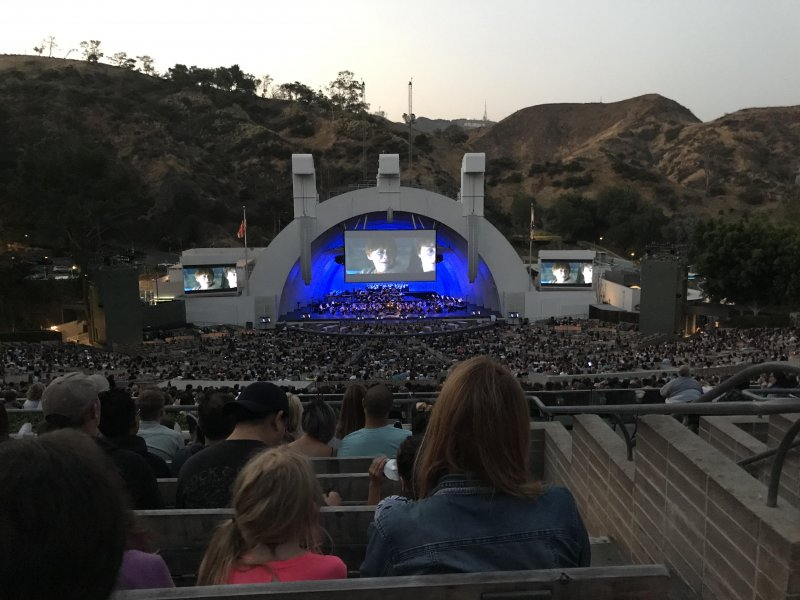 Harry Potter at the Bowl