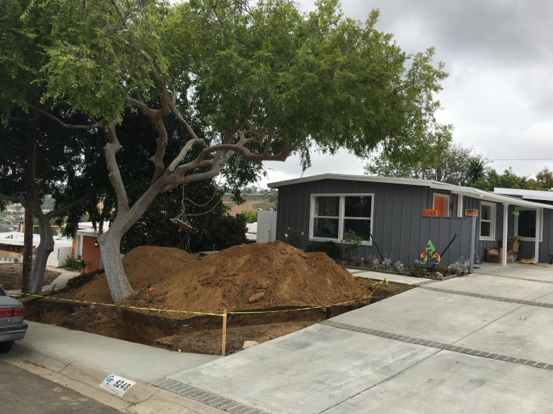 House is painted and landscaping has begun!