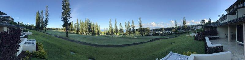 Good morning, Maui