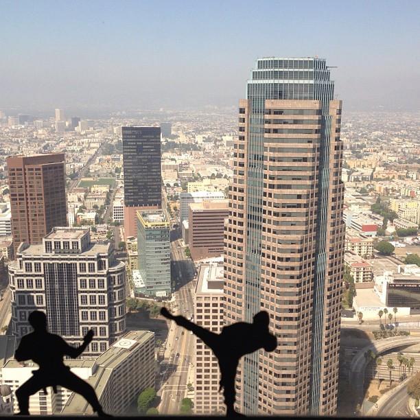My office ninjas.