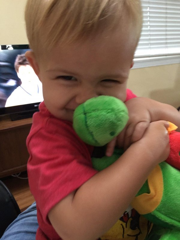 William loves his Rocket Turtle from Cumulus Networks! He is a future engineer. Can't you tell?
