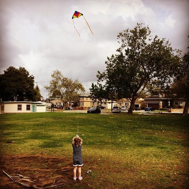 Let's go fly a kite.