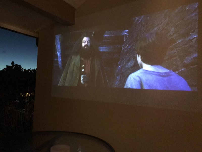 Movie night on the lanai. Travel projector FTW!