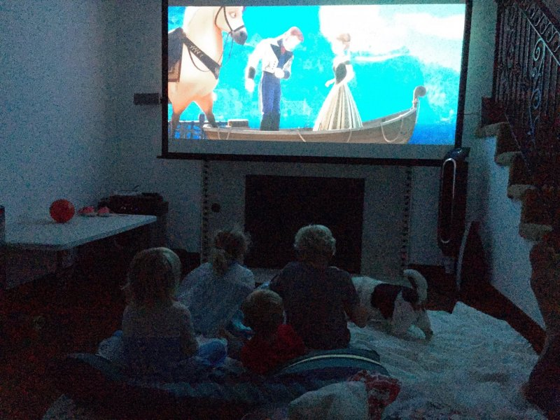 Just watching Frozen with a bunch of kids on a Saturday night in the home theater. NBD.